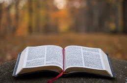 Projeto de Educação Financeira Para Igrejas Evangélicas