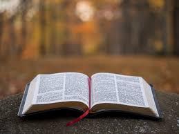 Como Implantar Projetos de Educação Financeira Em Igrejas Evangélicas